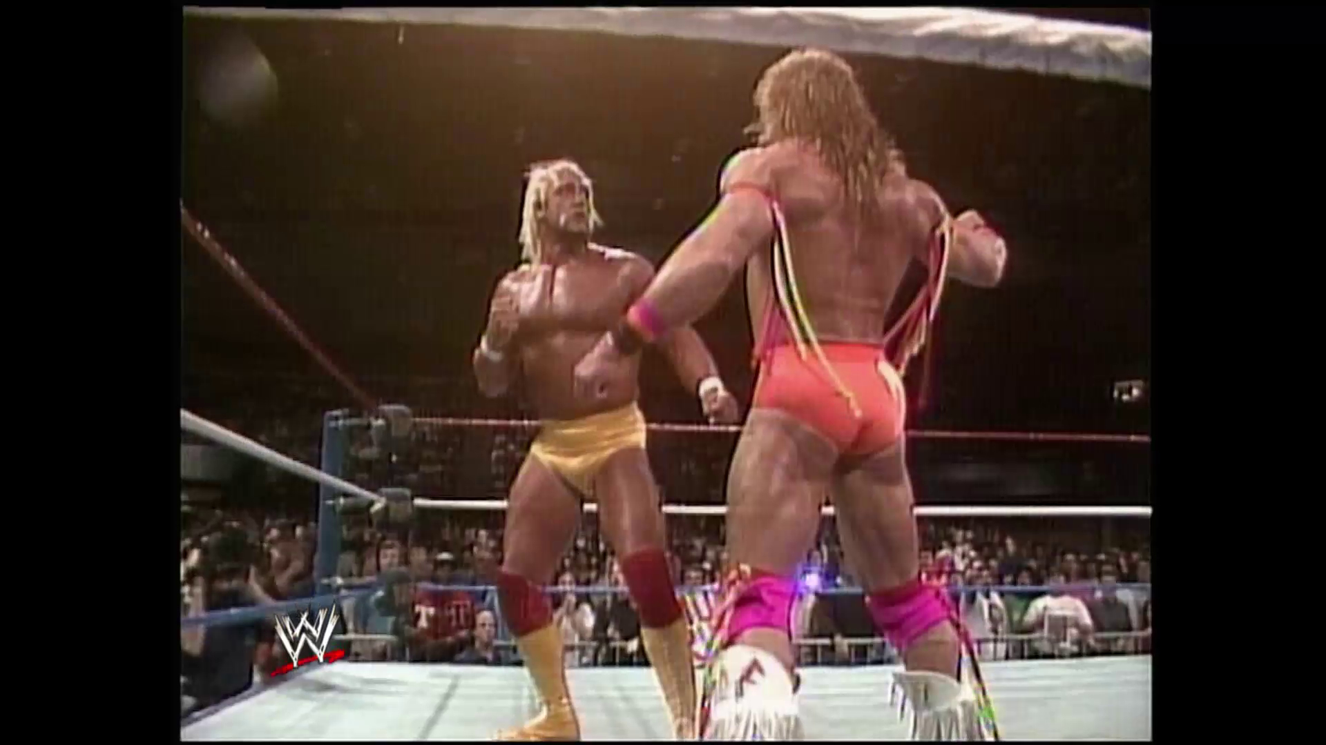 Ultimate Warrior In The Ring