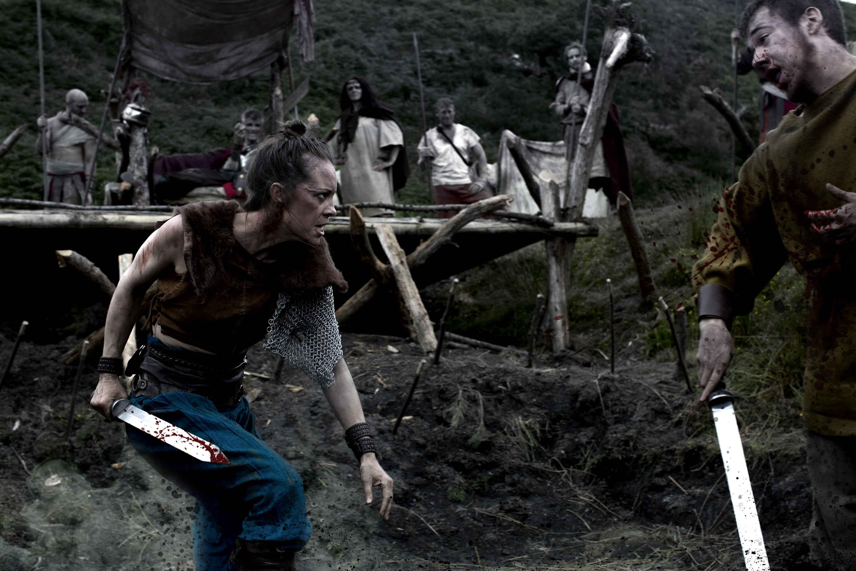 the lost viking dvd